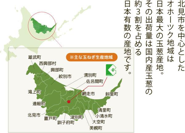 北見市を中心としたオホーツク地域は日本最大の玉葱産地。その出荷量は国内産玉葱の約3割を占める日本有数の産地です。