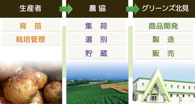 入荷の仕組み 生産者→農協→グリーンズ北見
